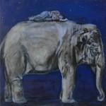Elefant / Elephant, 40 x 40, 2009