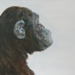 Abe flue / Monkey fly, 60x80, 2010